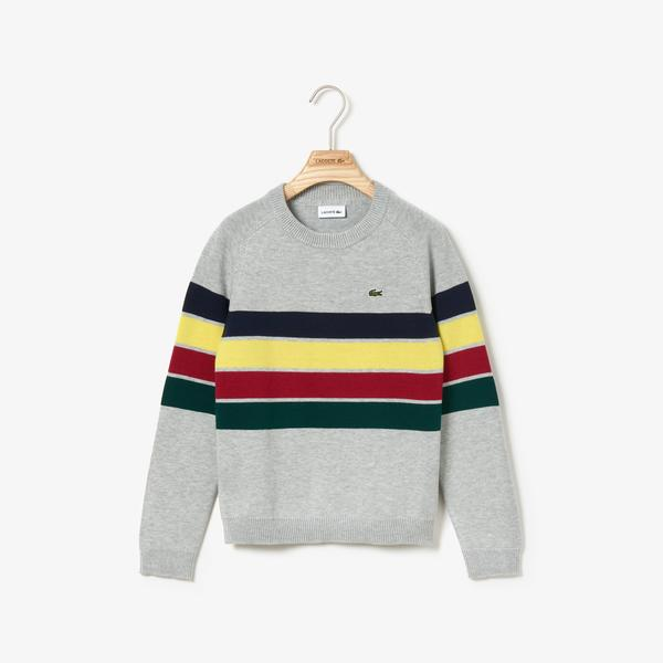 Lacoste Children sweater