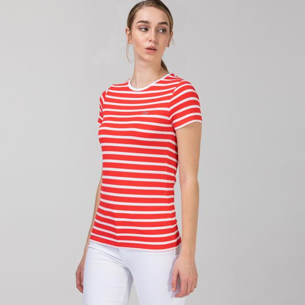 Lacoste Women's Round Neck Striped T-Shirt